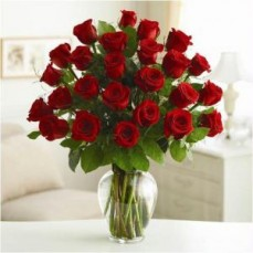 TERRIFIC! in 24 red roses...
