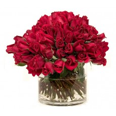 100 beautiful Red Roses