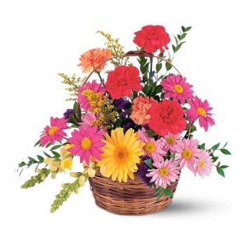 Vibrant Basket  by Alamo Heights Flowers and More