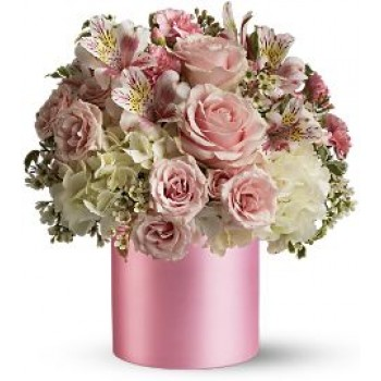 Forever Pink by Alamo Heights Flowers and More