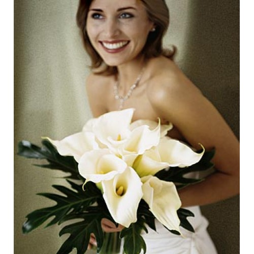 Calla Lilies Bouquet by Alamo Heights Flowers and More