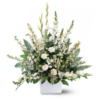 Best White Expressions Basket by Alamo Heights Flowers and More