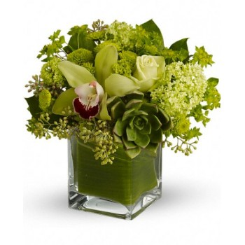 Rainforest Bouquet by Alamo Heights Flowers and More