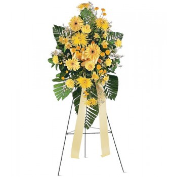Brighter Blessings Spray by Alamo Heights Flowers and More