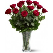 Premium Red Roses - Long Stemmed