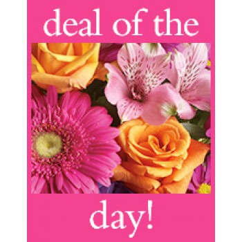 DEAL OF THE DAY by Alamo Heights Flowers and More